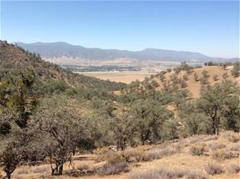 Tehachapi wilderness